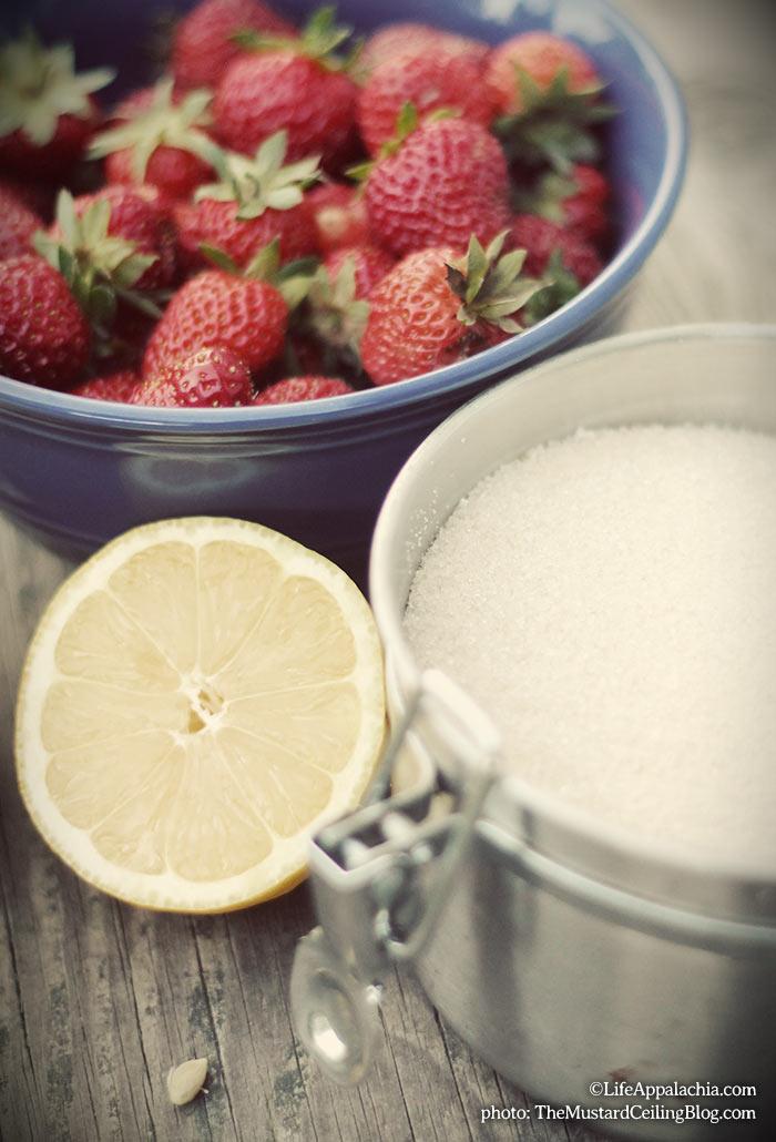 simple-strawberry-jam-recipe